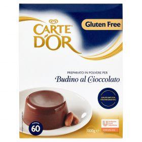 BUDINO CIOCCOLATO CARTE D'OR KG.1