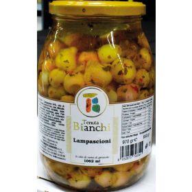 LAMPASCIONI TEN. BIANCHI 0S. ML.1062