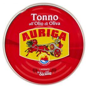 TONNO AURIGA O.O. GR240