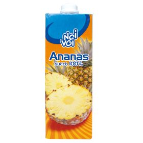 NOI&VOI S.FRUTTA ANANAS LT.1